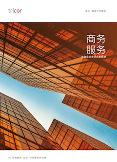 Chinese Business Services Brochure