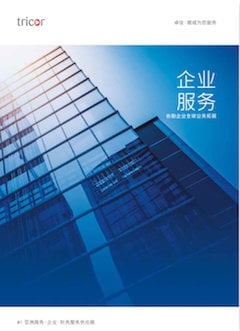 Chinese Corporate Services Guide