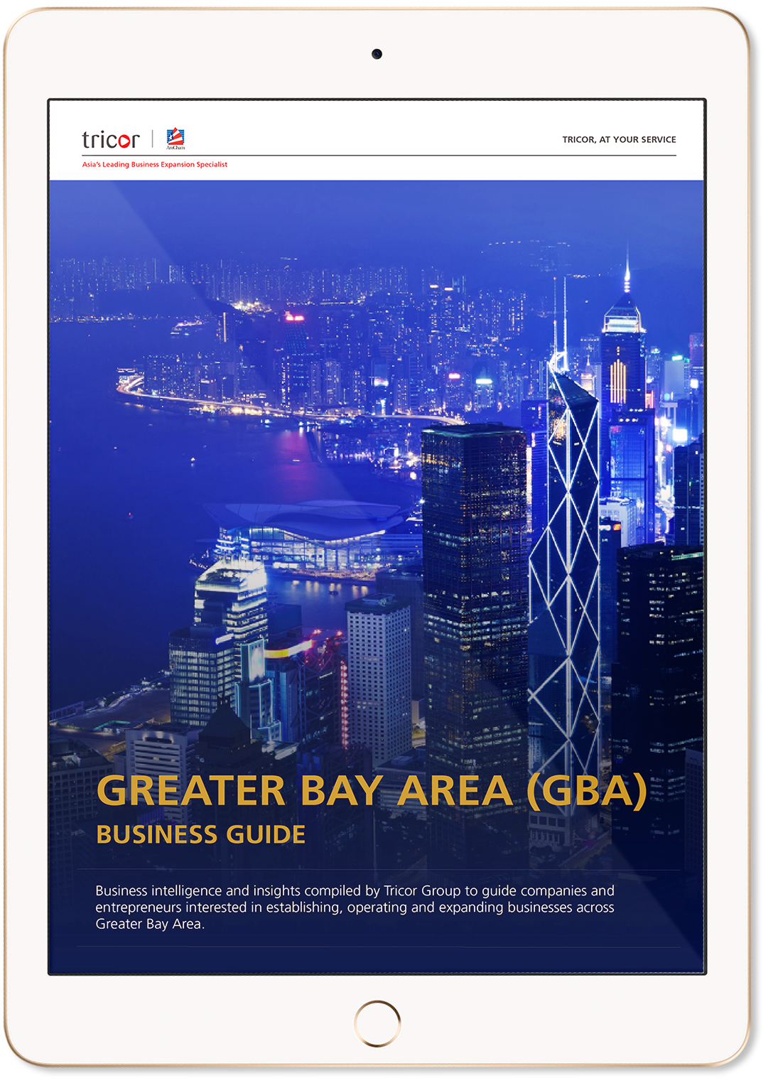 Doing business in the Greater Bay Area